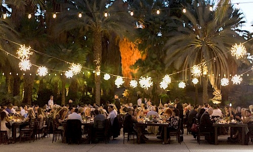The wedding dinner reception in a serene and lush grove of trees.