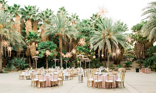 The Palm Garden provides an outdoor dinner surrounded by a grove of palm trees.