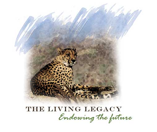 The Living Legacy logo