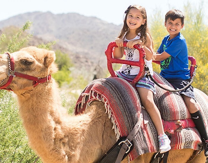 Take a camel ride at the Living Desert Zoo and Gardens. Click for more details.
