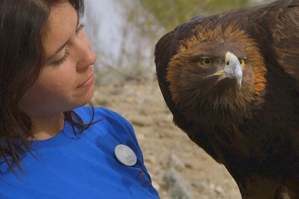 Experience animal encounters at the Living Desert Zoo and Gardens. Click for more details.