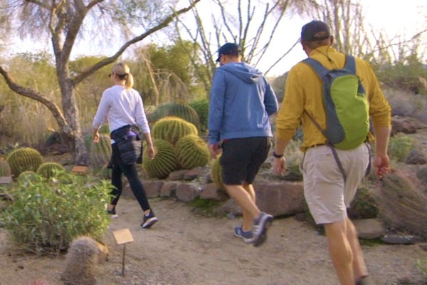 Nature and hiking trails at the Living Desert Zoo and Gardens. Click for more details.