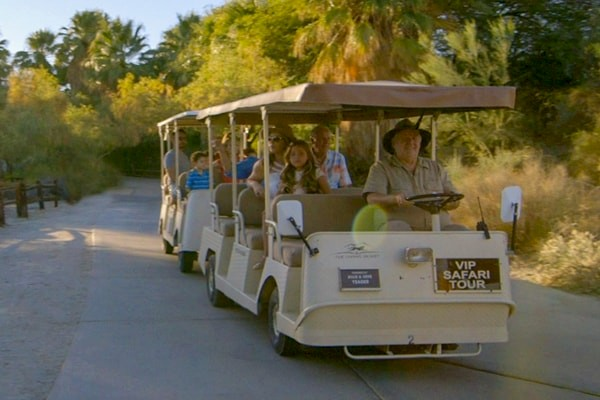 Private safari tours at The Living Desert Zoo and Gardens. Click for more details.