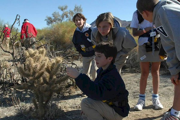 The Living Desert Zoo and Gardens is a leader in conservation and education efforts for the Desert Tortoise.