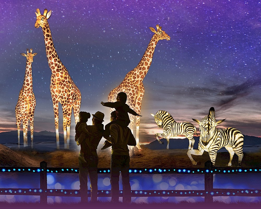 WildLights is an annual, signature event of The Living Desert Zoo and Gardens.