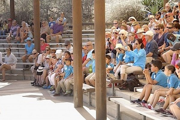 Bring class field trips to The Living Desert Zoo and Gardens. Click for more details.