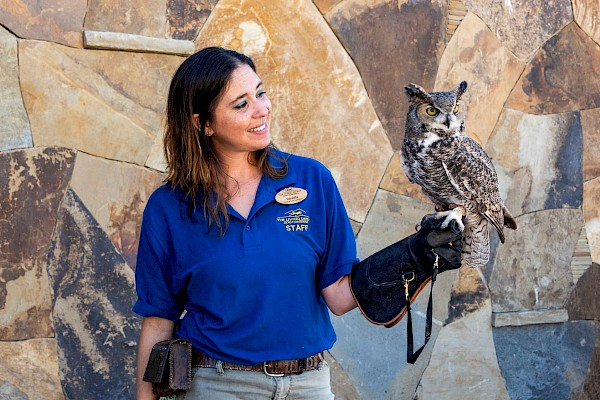 Wildlife on Wheels at The Living Desert Zoo and Gardens. Click for more details.