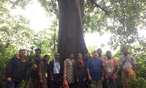 AERF team with giant tree. Photo 1.