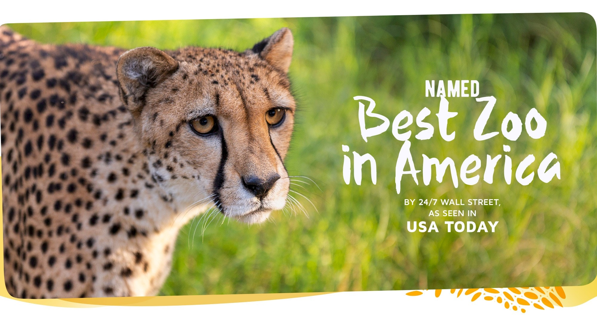 Named Best Zoo in America. Click for more information.