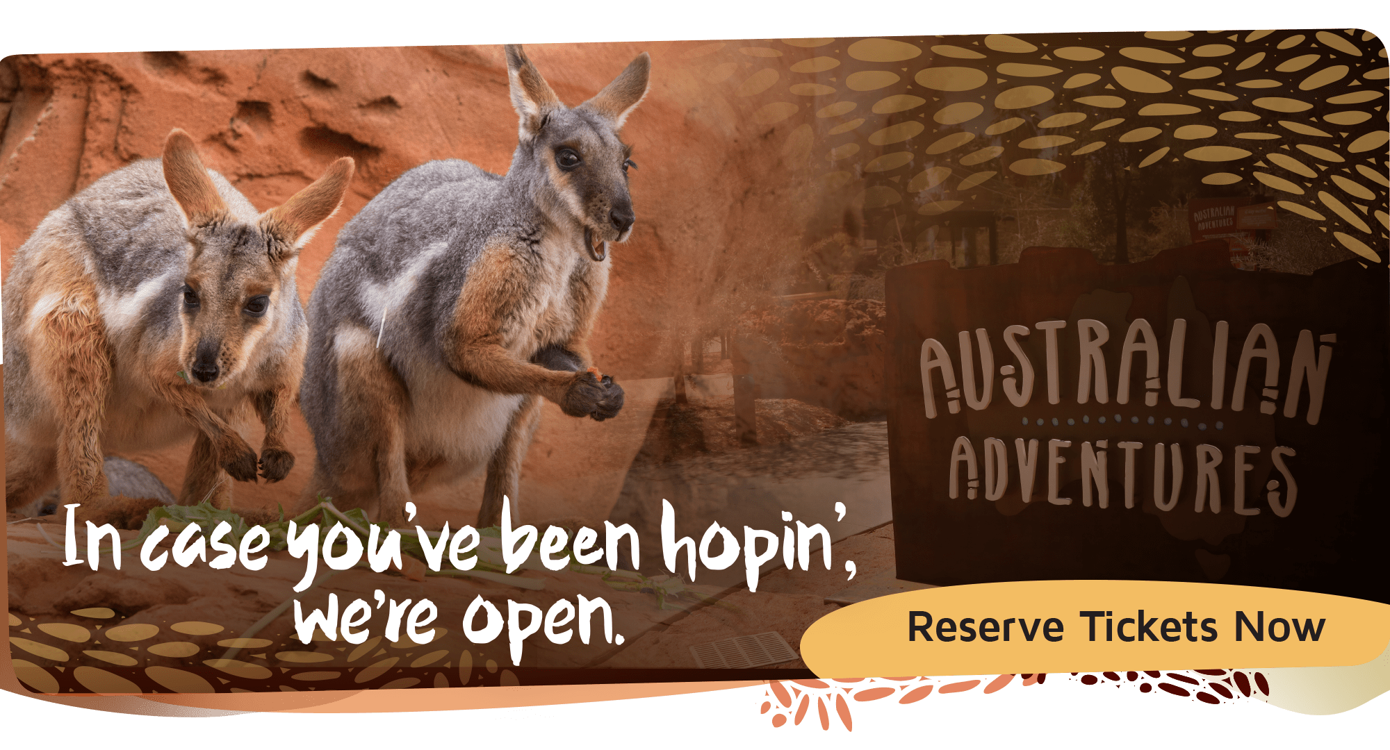 Australian Adventures Now Open