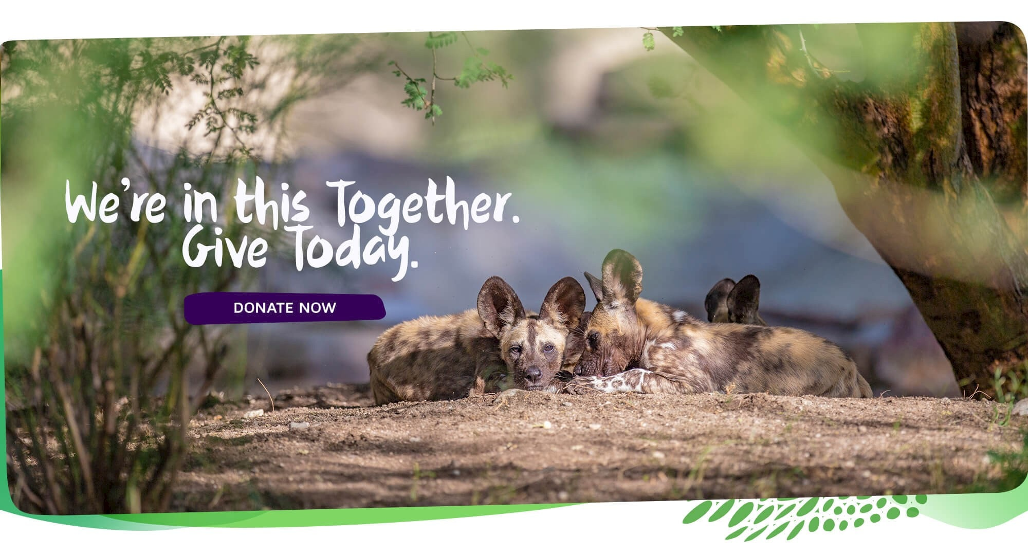 We're in this together. Give today. Click to donate.