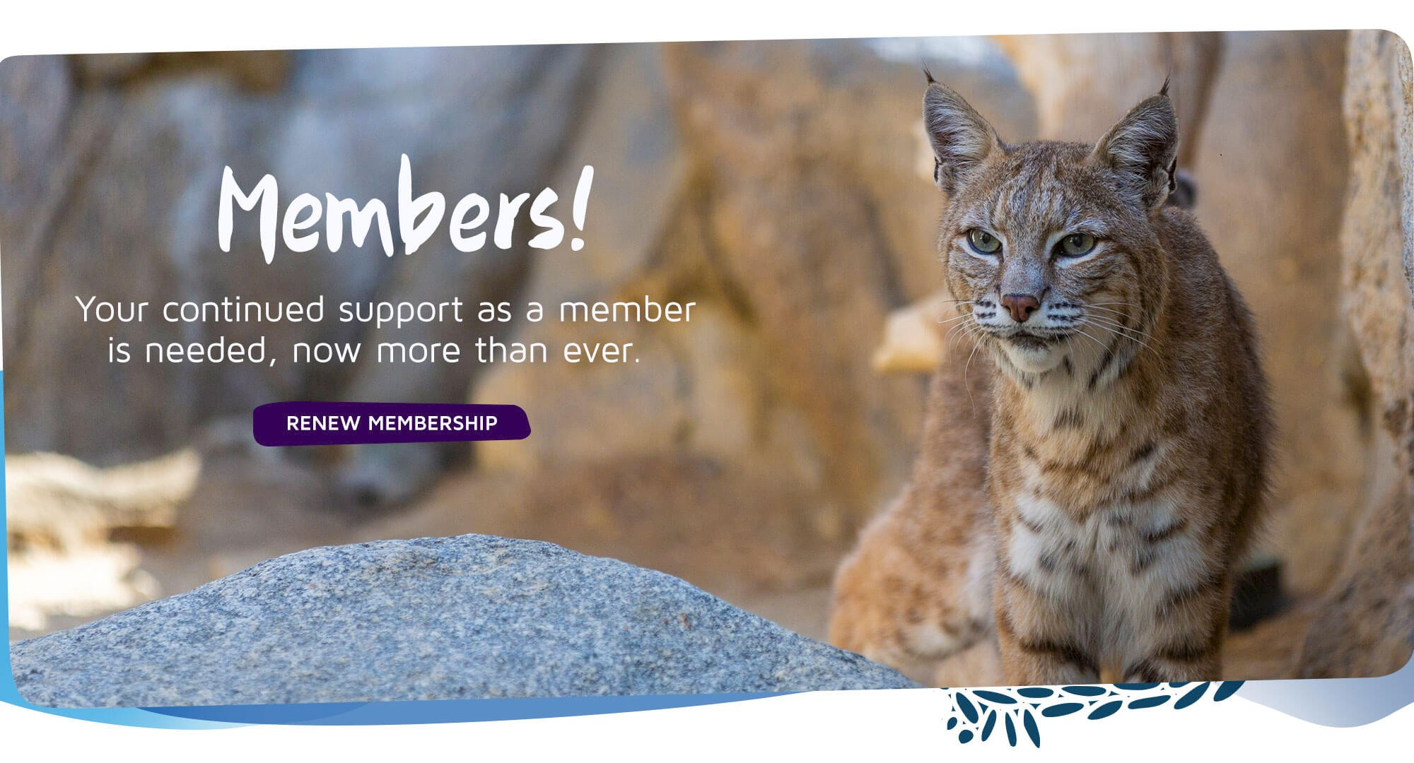 Members! Your continued support as a members is needed, now more than ever. Click to renew.