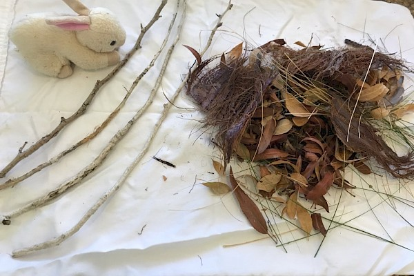 To re-nest rabbits you will need: Leaf litter/plant debris, four sticks or strings of approximately equal length, stuffed animal.