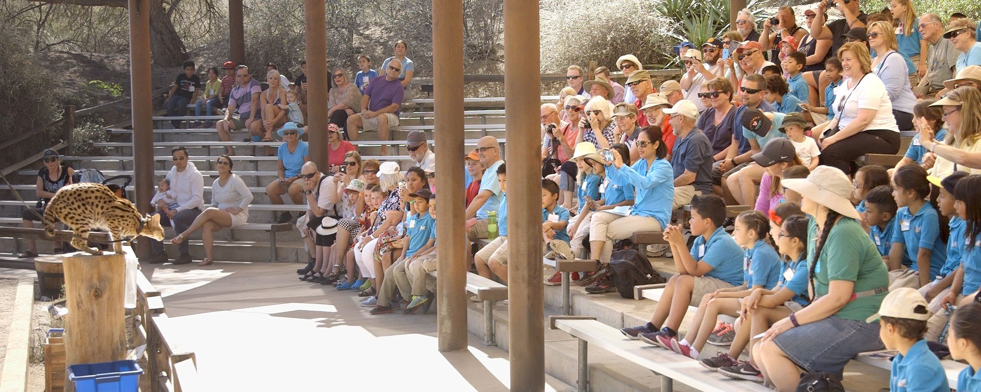 Field trips at The Living Desert Zoo and Gardens.