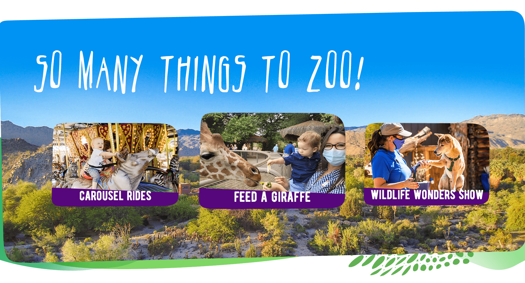 There are so many things to do at The Living Desert Zoo and Gardens. Click to learn more!