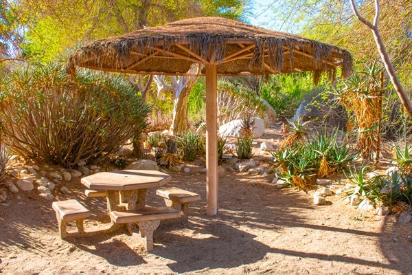 Picnic Areas at The Living Desert